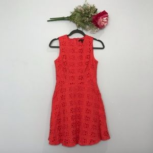 Cynthia Steffe | Eyelet Fit and Flare Dress SZ 6